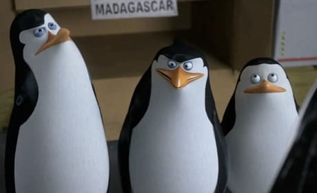 The Penguins of Madagascar Movie Still