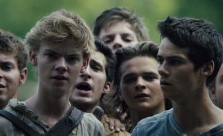 The Maze Runner Dylan O'Brien Thomas Brodie-Sangster