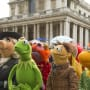Muppets Most Wanted Cast