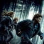 Reel Movie Reviews: Harry Potter and the Deathly Hallows Part I