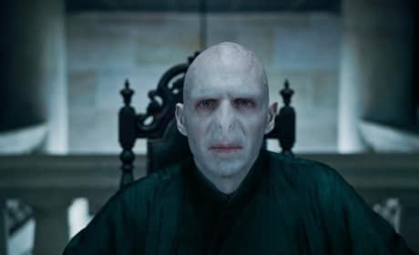 Ralph Fiennes as the Dastardly Voldemort