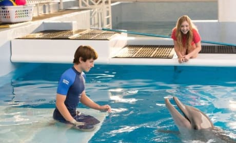Dolphin Tale 2 Review: Finding Hope