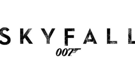 Skyfall Official Logo