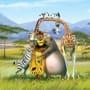 Madagascar: Escape 2 Africa Picture