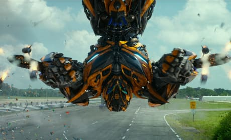 Transformers Takes Out Tammy: Weekend Box Office Report