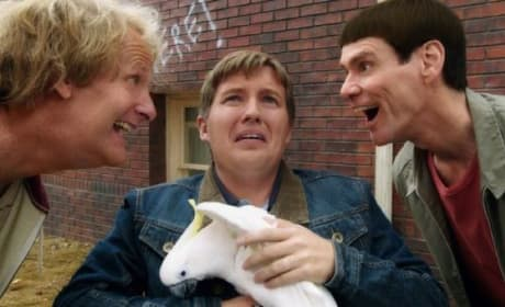 Dumb and Dumber To Jeff Daniels Jim Carrey Photo