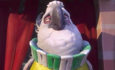 Rio 2 Trailer: Nigel Will Survive!