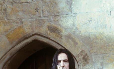 Professor Severus Snape Picture