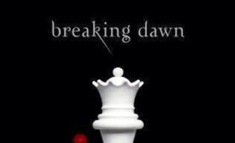 New Breaking Dawn Details Revealed!
