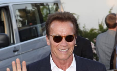 Schwarzenegger Film The Last Stand Has Release Date
