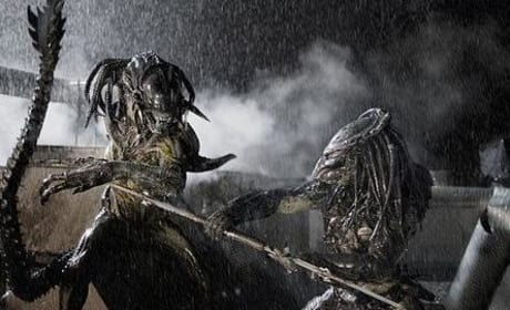 Photos from Aliens vs. Predator: Requiem
