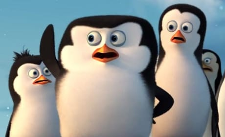 Penguins of Madagascar Babies
