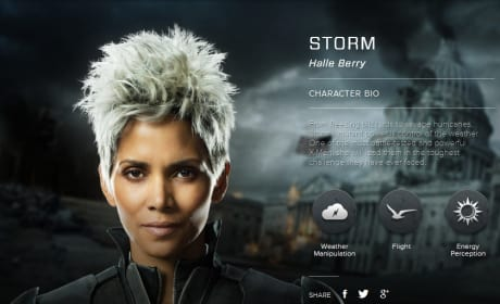 X-Men Days of Future Past Storm Bio Banner