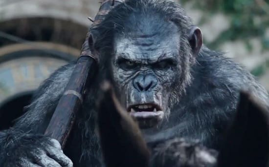 Dawn of the Planet of the Apes Ape Still