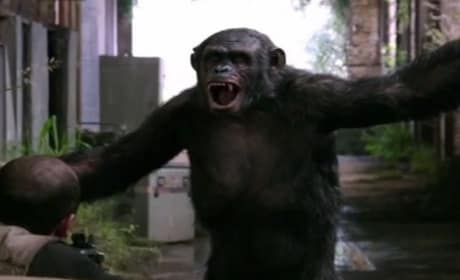 Dawn of the Planet of the Apes Clip: Playful Ape Is Deadly Ape