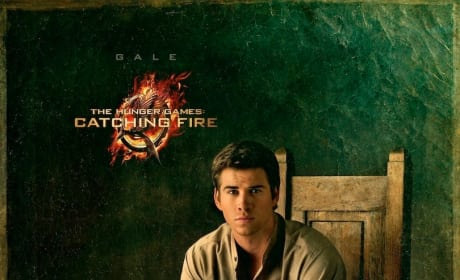 Catching Fire Gale Portrait
