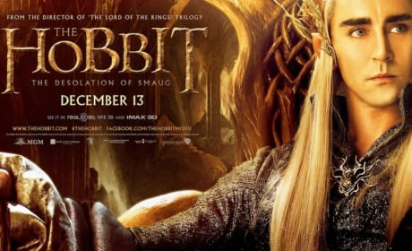 The Hobbit: The Desolation of Smaug Banner Lee Pace