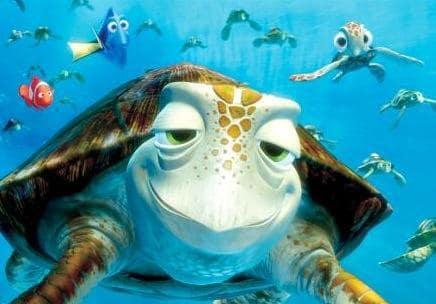 Crush the Sea Turtle