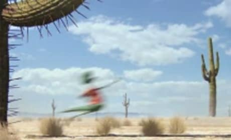 New Poster and Trailer for Rango!