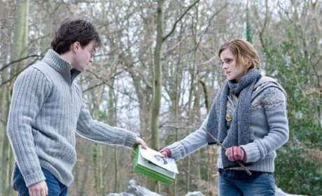 Harry and Hermoine in the Woods