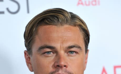 Travis McGee: Leonardo DiCaprio Reteams with Writer Dennis LeHane