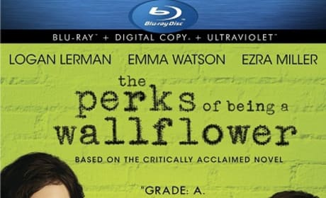 The Perks of Being a Wallflower DVD Review: Emma Watson Charms