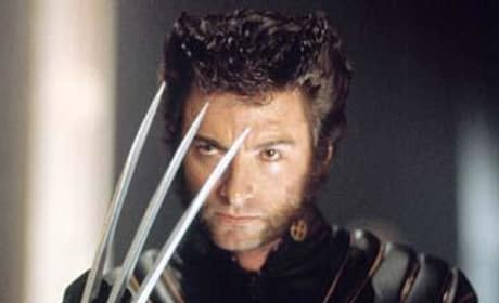 Wolverine Pic