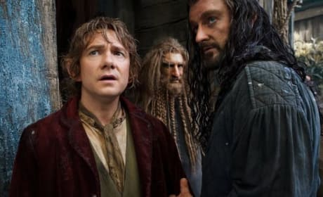 The Hobbit: The Desolation of Smaug Martin Freeman Richard Armitage