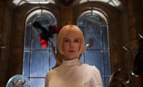 Paddington Star Nicole Kidman