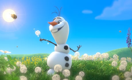 Frozen Is Highest Grossing Animated Movie of All Time!