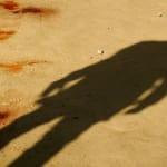 Django Unchained Shadow