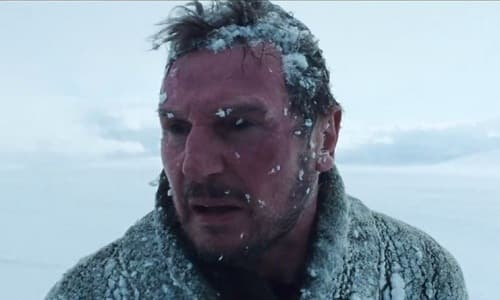 The Grey Star Liam Neeson