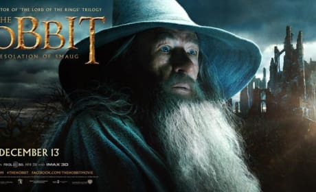 The Hobbit: The Desolation of Smaug Gandalf & Legolas Banners!