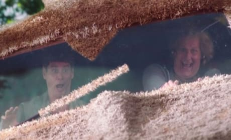 Dumb and Dumber To TV Spot: Check Out the Hotties!