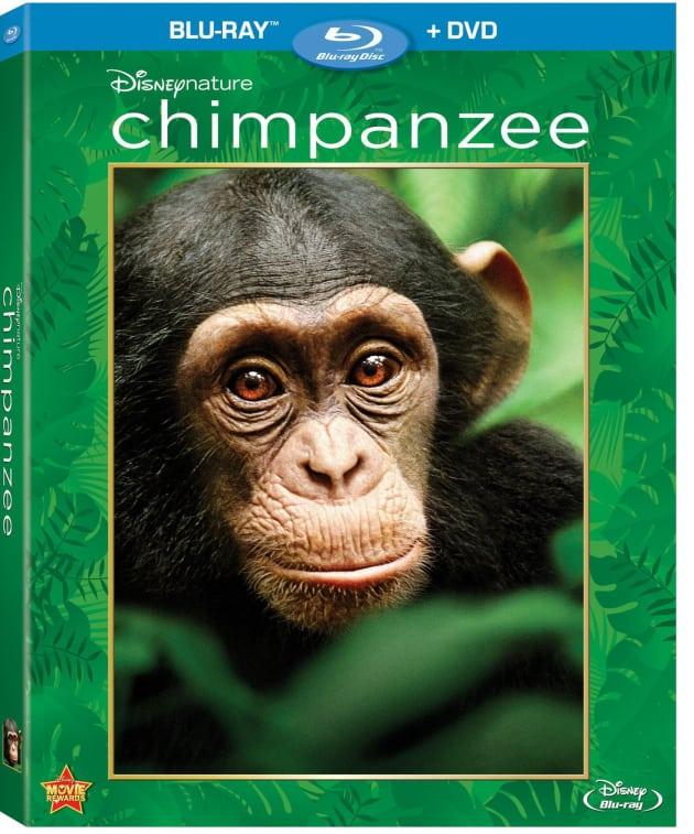 Chimpanzee Blu-Ray Cover