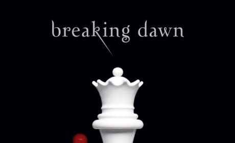 Breaking Dawn: Coming Kinda Soon?