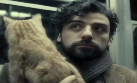 Inside Llewyn Davis Trailer: Explain the Cat!