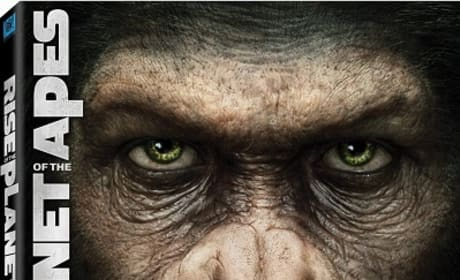 DVD Releases: Rise of the Planet of the Apes and More