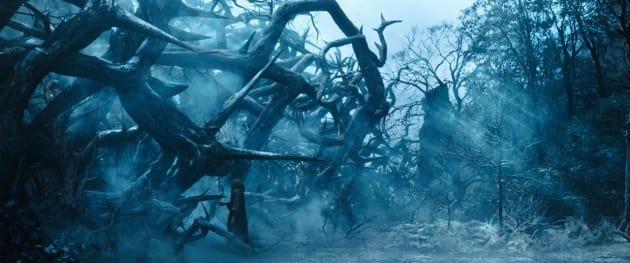 Maleficent Set Photo