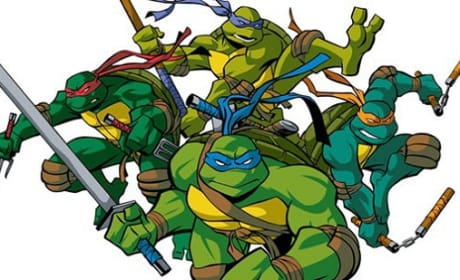 Ninja Turtles Casting News: All the Turtles are Cast!