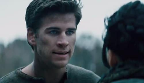 The Hunger Games Catching Fire Gale