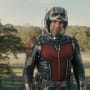 Ant-Man Star Paul Rudd