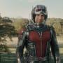 Ant-Man Star Paul Rudd