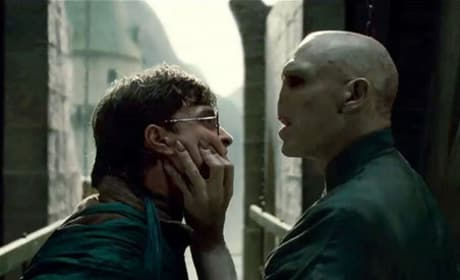 Harry Potter and the Deathly Hallows Split Point Spoiler Revealed!
