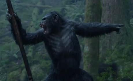 Dawn of the Planet of the Apes Trailer Still