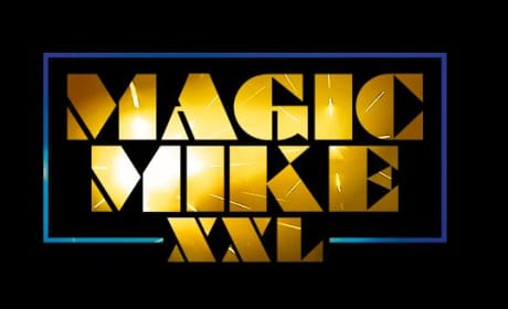 Magic Mike XXL Plot Revealed: Who Is Joining Channing Tatum?
