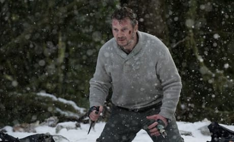 Liam Neeson Stars in The Grey