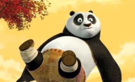 Talk of Kung Fu Panda Sequel Underway