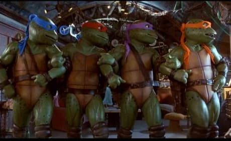 Teenage Mutant Ninja Turtles Cast