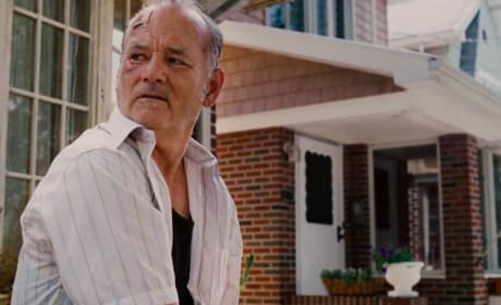 St. Vincent Star Bill Murray